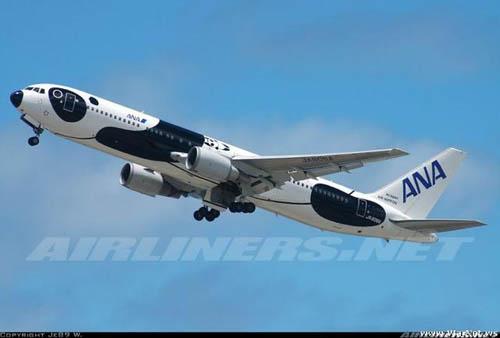 popsa biz-реклама на самолетах-30