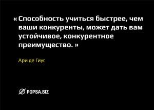 Бизнес-советы от popsa.biz. Ари де Гиус