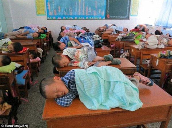 popsa biz школа Китай Маркетинг в образовании
