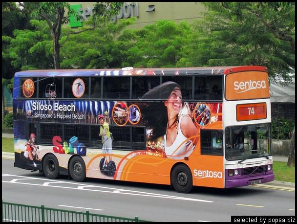 popsa biz реклама на автобусах 06