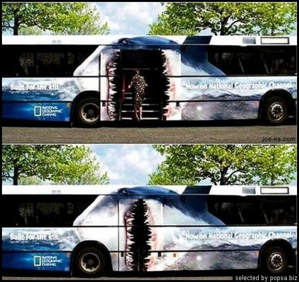 popsa biz реклама на автобусах 19