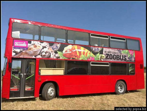 popsa biz реклама на автобусах 22