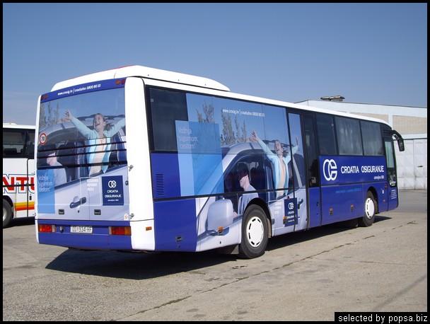 popsa biz реклама на автобусах 31