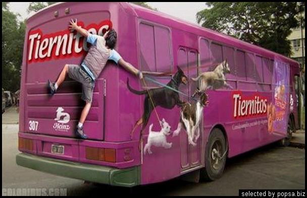 popsa biz реклама на автобусах 51