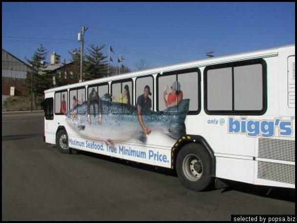popsa biz реклама на автобусах 53