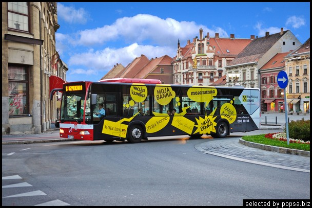 popsa biz реклама на автобусах 61