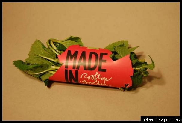 popsa biz - креативная упаковка еды напитков 43