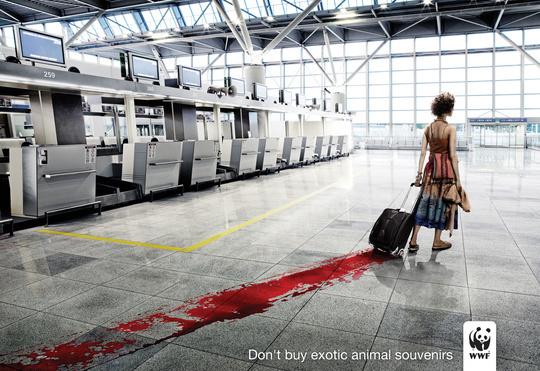 шокирущая реклама popsa.biz 3