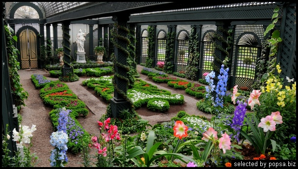 popsa biz зимний сад - дизайн - бизнес - комфорт 01.jpg