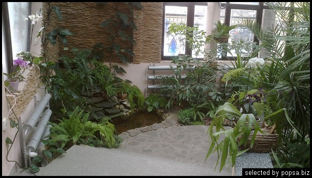 popsa biz зимний сад - дизайн - бизнес - комфорт 04.jpg
