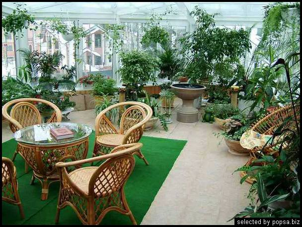 popsa biz зимний сад - дизайн - бизнес - комфорт 05.jpg