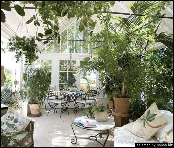popsa biz зимний сад - дизайн - бизнес - комфорт 13.jpg
