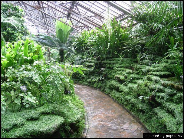 popsa biz зимний сад - дизайн - бизнес - комфорт 15.jpg