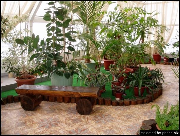 popsa biz зимний сад - дизайн - бизнес - комфорт 16.jpg