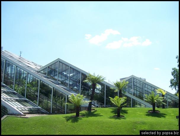 popsa biz зимний сад - дизайн - бизнес - комфорт 19.jpg