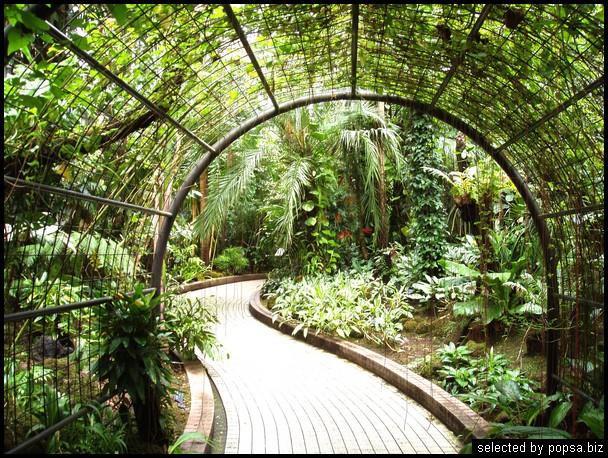 popsa biz зимний сад - дизайн - бизнес - комфорт 20.jpg