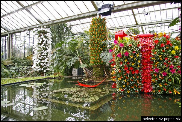 popsa biz зимний сад - дизайн - бизнес - комфорт 24.jpg