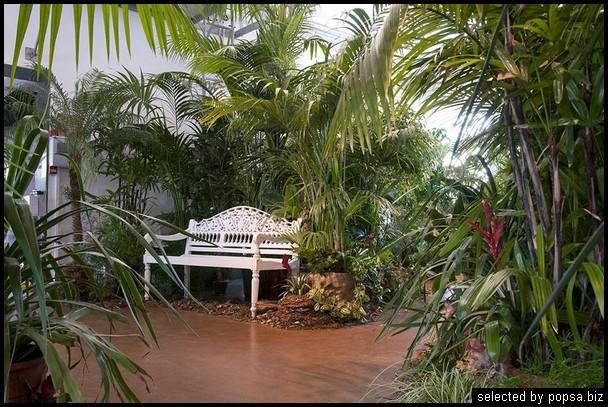 popsa biz зимний сад - дизайн - бизнес - комфорт 27.jpg