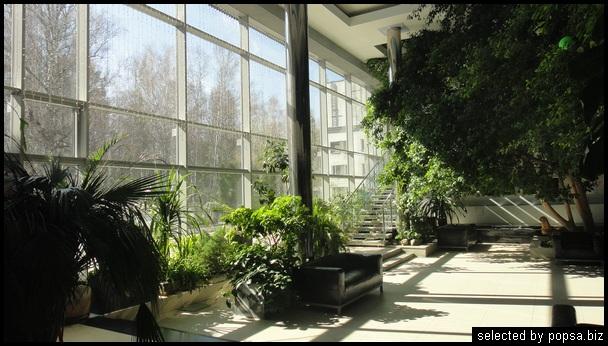 popsa biz зимний сад - дизайн - бизнес - комфорт 29.jpg