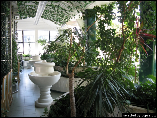 popsa biz зимний сад - дизайн - бизнес - комфорт 30.jpg
