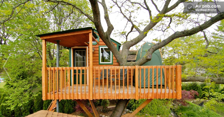 домик на дереве Airbnb