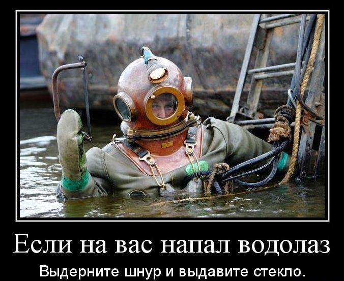 лайфхак водолаз popsa.biz